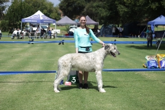 Junior-Dog-3rd-Brenak-Romulus