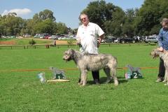 Grad-Dog-1st-Sir-William