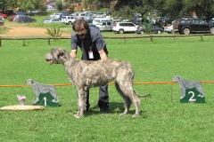 Minor-Puppy-Bitch-1st-Kayla