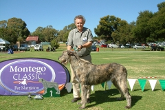Best-Puppy-Celticlight-Aslan-Crusader-of-Toddington