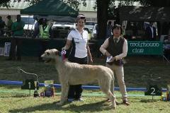 Graduate-Dog-1st-Mukonry-Cu-Dougal-Conry