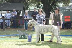 Junior-Dog-4th-Burgloisenthal-Agalactica